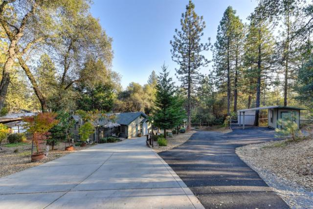 9561 Mosquito Road, Placerville, CA 95667 (MLS #18076770) :: Keller Williams Realty - Joanie Cowan
