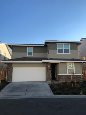 8432 Amber Valley Lane, Elk Grove, CA 95758 (MLS #18080591) :: Dominic Brandon and Team