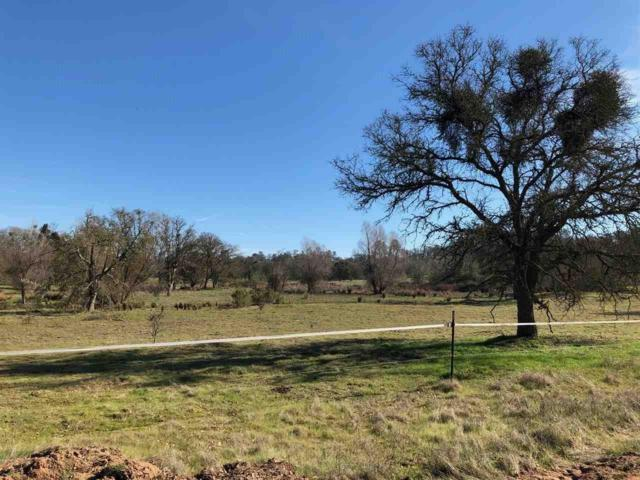4030 Reservation Road, Ione, CA 95640 (MLS #18600166) :: The MacDonald Group at PMZ Real Estate