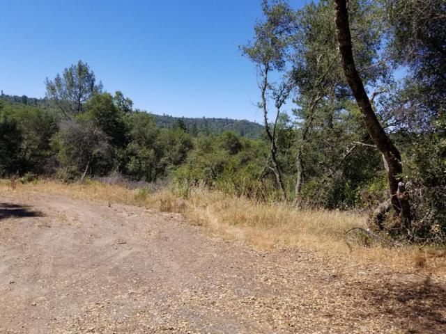 13690 Pine Gulch Road, Sutter Creek, CA 95685 (MLS #18600480) :: REMAX Executive