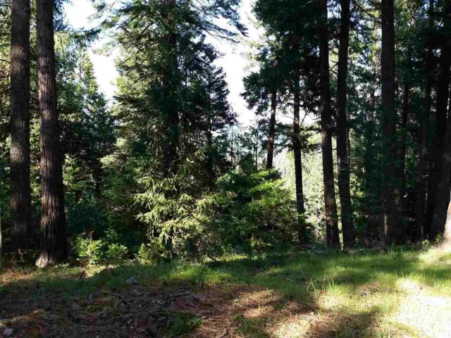 16496 Meadow Vista Drive, Pioneer, CA 95666 (MLS #18600587) :: Team Ostrode Properties