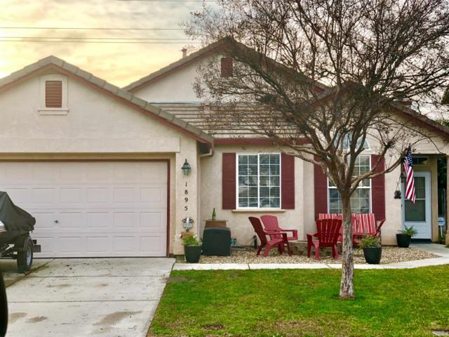 1895 Scharmann Lane, Manteca, CA 95336 (MLS #19000985) :: REMAX Executive