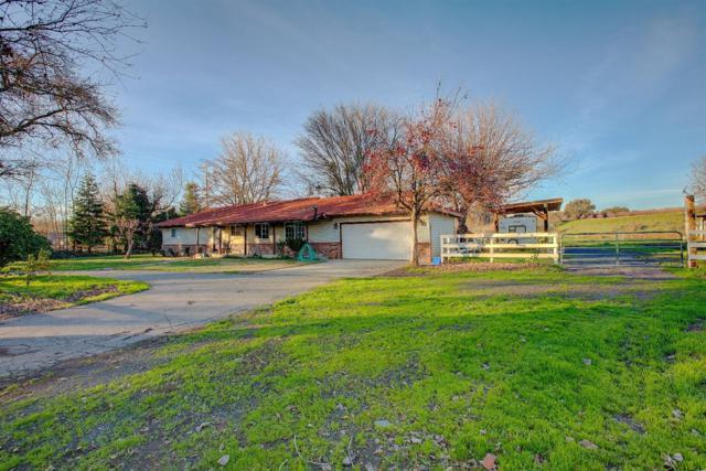 13615 Orange Blossom Road, Oakdale, CA 95361 (MLS #19004554) :: REMAX Executive