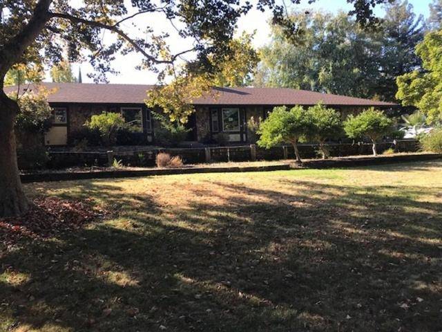 11306 Scarlet Oak Drive, Oakdale, CA 95361 (MLS #19004821) :: REMAX Executive