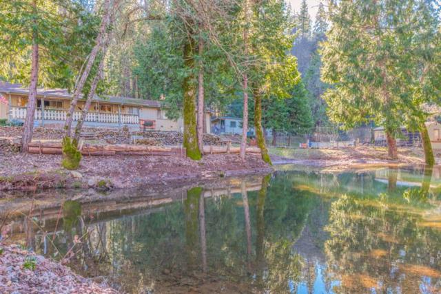 18420 Ponderosa Annex Road, Sutter Creek, CA 95685 (MLS #19005430) :: REMAX Executive