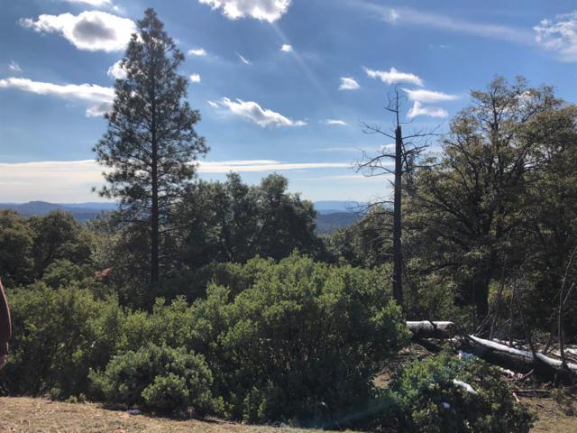 0 Rose Quartz Ct, Pine Grove, CA 95665 (MLS #19006839) :: Keller Williams - Rachel Adams Group