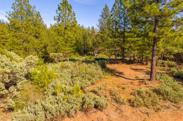 0 Howser, Sonora, CA 95370 (MLS #19007906) :: The Del Real Group