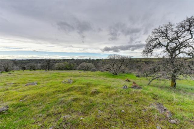 1581 English Colony Way, Penryn, CA 95663 (MLS #19008147) :: Heidi Phong Real Estate Team
