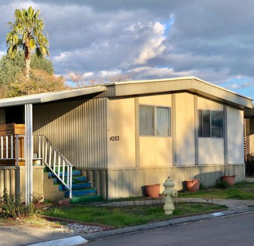 4283 Fernwood Street, Rocklin, CA 95677 (MLS #19009107) :: The MacDonald Group at PMZ Real Estate