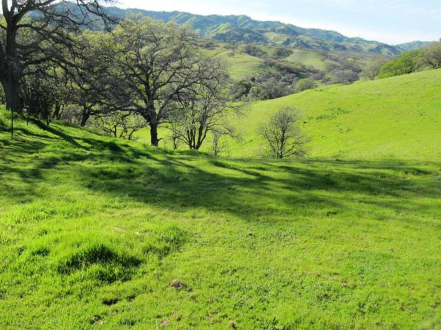 0 County Road 34, Winters, CA 95694 (MLS #19010765) :: eXp Realty - Tom Daves