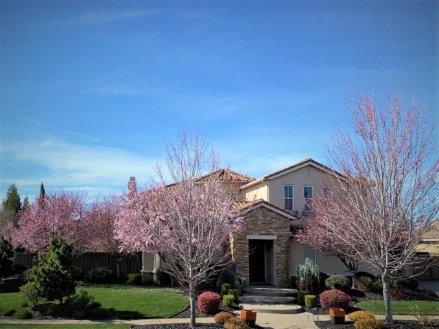 8609 Hawkstone Court, Roseville, CA 95747 (MLS #19010774) :: REMAX Executive