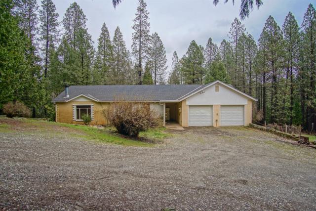 12091 Allison Ranch Road, Grass Valley, CA 95949 (MLS #19011667) :: Dominic Brandon and Team