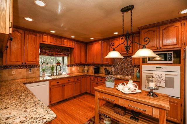 12825 Burnt Cedar Lane, Pine Grove, CA 95665 (MLS #19011939) :: Heidi Phong Real Estate Team