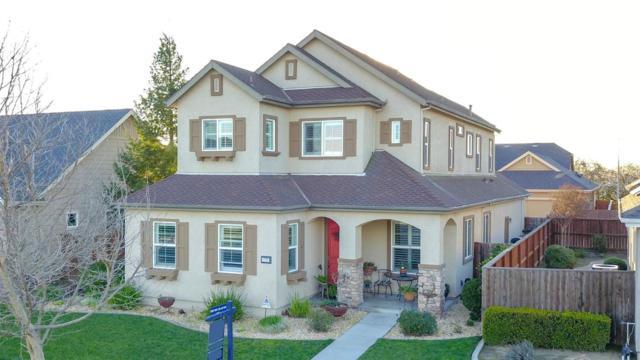 1727 Limestone Drive, Ripon, CA 95366 (MLS #19012072) :: Heidi Phong Real Estate Team
