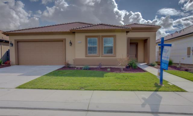 19539 Verona Way, Hilmar, CA 95324 (MLS #19012620) :: Heidi Phong Real Estate Team
