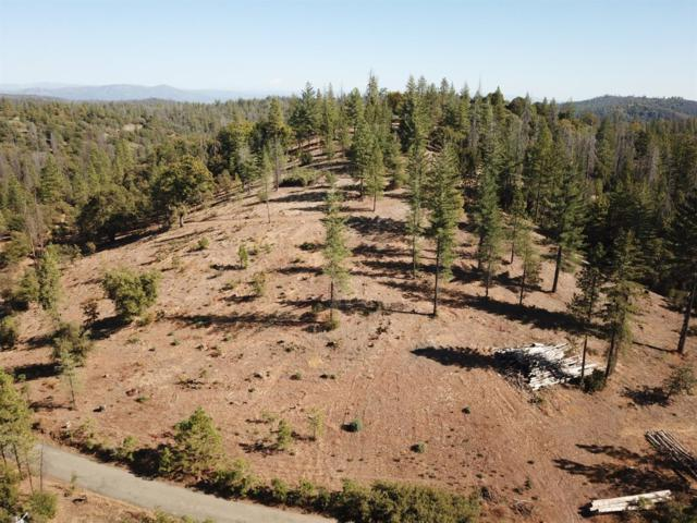 5702 Cuneo Rd, Coulterville, CA 95311 (MLS #19016076) :: Heidi Phong Real Estate Team