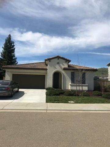 9545 California Oaks Circle, Patterson, CA 95363 (MLS #19016220) :: The Del Real Group