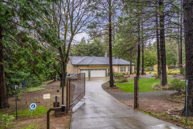 5548 Glen Drive, Foresthill, CA 95631 (MLS #19018307) :: Heidi Phong Real Estate Team