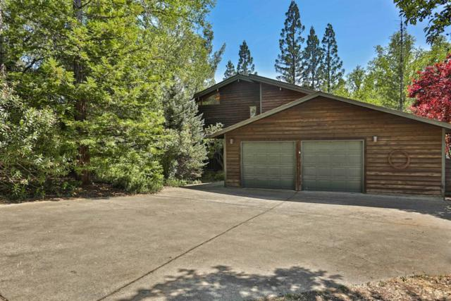 3048 Stagecoach Road, Placerville, CA 95667 (MLS #19022661) :: REMAX Executive