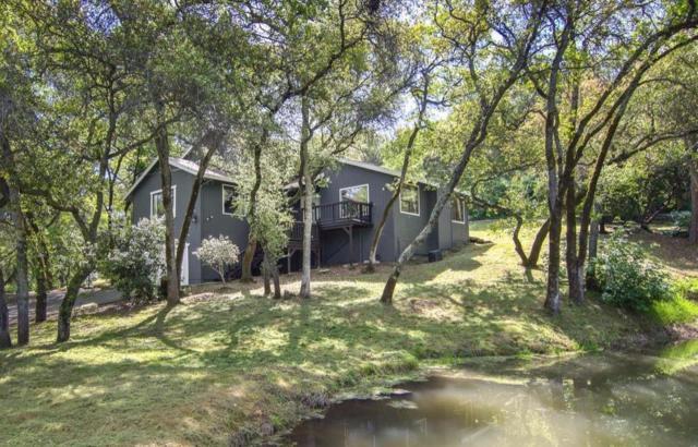 3535 Ridgewood Drive, Loomis, CA 95650 (MLS #19023015) :: Keller Williams - Rachel Adams Group