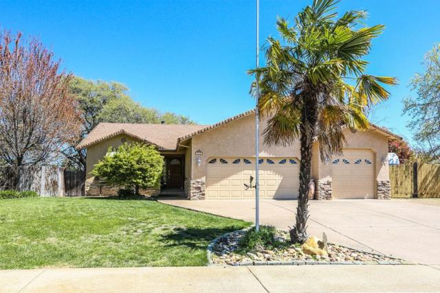 130 Hillside Place, Jackson, CA 95642 (MLS #19023693) :: Dominic Brandon and Team