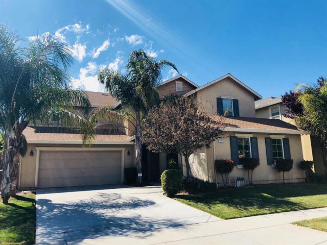 321 Summer Phlox Lane, Patterson, CA 95363 (MLS #19025182) :: The MacDonald Group at PMZ Real Estate
