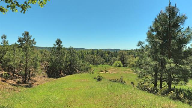 18451 Wildlife Trail, Fiddletown, CA 95629 (MLS #19026214) :: Keller Williams - Rachel Adams Group