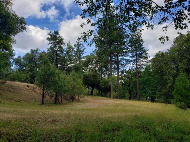20455 Timber Ridge Road, Pine Grove, CA 95665 (MLS #19033031) :: eXp Realty - Tom Daves