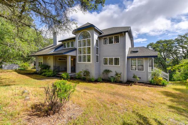 4941 Bruce Court, Cool, CA 95614 (MLS #19033422) :: Dominic Brandon and Team