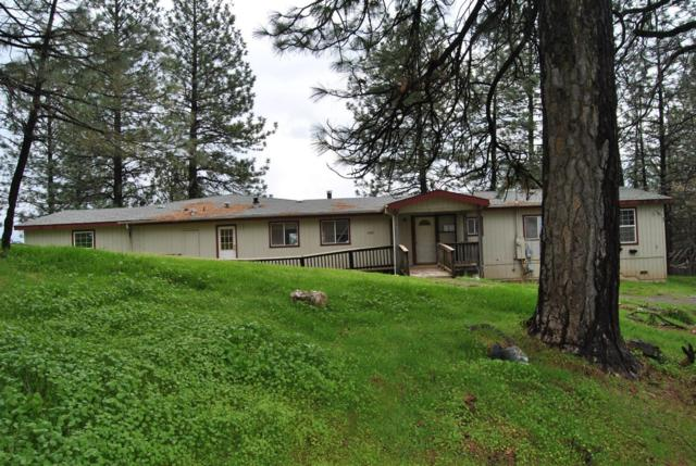 6121 Dark Canyon Road, Placerville, CA 95667 (MLS #19034394) :: Dominic Brandon and Team