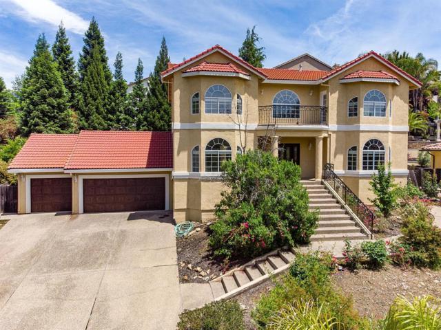 3591 Park Drive, El Dorado Hills, CA 95762 (MLS #19034688) :: eXp Realty - Tom Daves