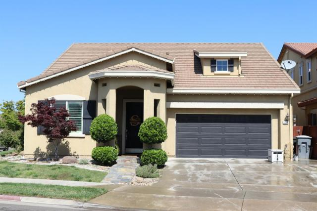 554 Stetson Drive, Oakdale, CA 95361 (MLS #19035724) :: eXp Realty - Tom Daves