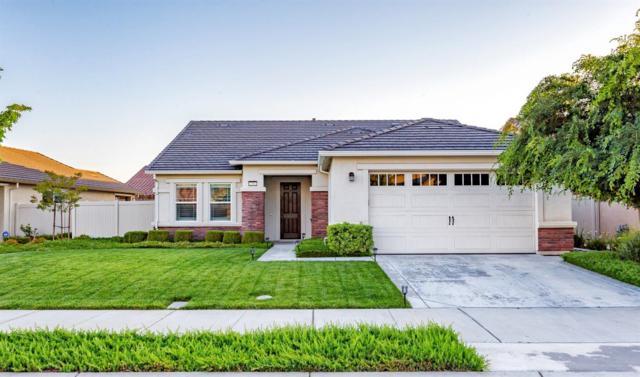 1352 Chestnut Hill Drive, Manteca, CA 95336 (MLS #19036003) :: REMAX Executive