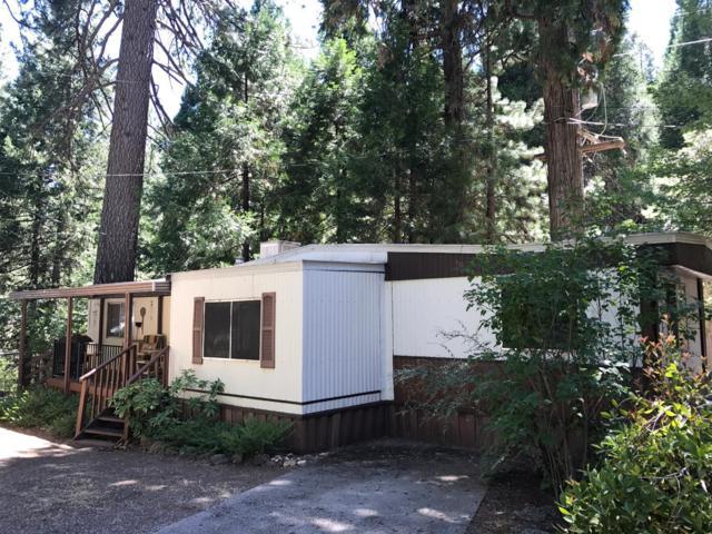 5840 Pony Express Tr #7, Pollock Pines, CA 95726 (MLS #19036229) :: REMAX Executive