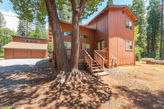 26070 Sugar Pine Drive, Pioneer, CA 95666 (MLS #19036912) :: Keller Williams - Rachel Adams Group