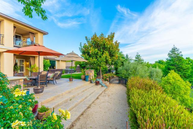 8062 Anastasia Way, El Dorado Hills, CA 95762 (MLS #19037640) :: Keller Williams - Rachel Adams Group