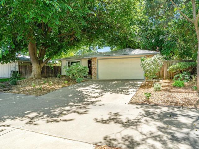 2900 Temple Drive, Davis, CA 95618 (MLS #19038947) :: Keller Williams - Rachel Adams Group
