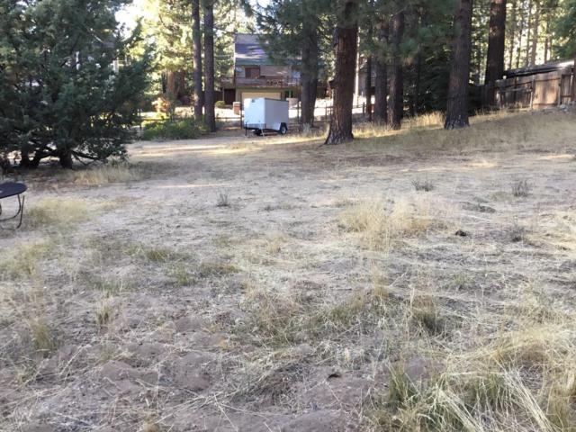 1149 Golden Bear Trail, South Lake Tahoe, CA 96150 (MLS #19039640) :: Folsom Realty