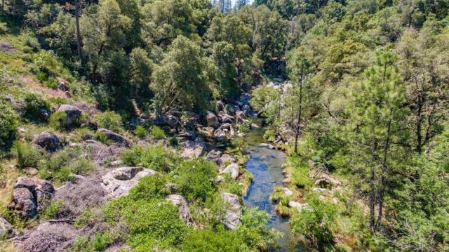 14475 Emigrant Trail, River Pines, CA 95675 (MLS #19041060) :: Dominic Brandon and Team