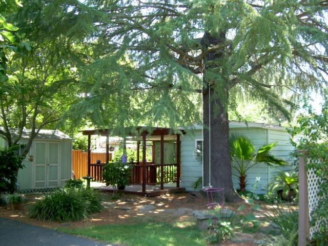 21 Outer Circle, Davis, CA 95618 (MLS #19042403) :: REMAX Executive