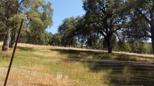 5208 Meadow Croft Lane, Pilot Hill, CA 95664 (MLS #19042864) :: The MacDonald Group at PMZ Real Estate