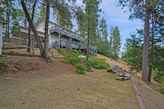 12150 Gold Strike Road, Pine Grove, CA 95665 (MLS #19043807) :: Dominic Brandon and Team