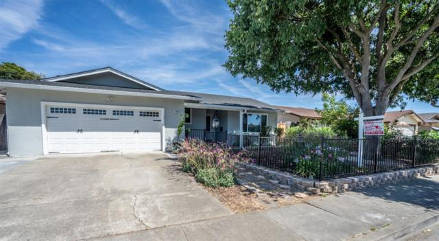 2465 Almaden Boulevard, Union City, CA 94587 (MLS #19044033) :: REMAX Executive