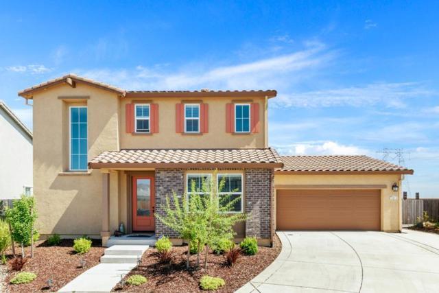 1013 Wisteria Court, Vacaville, CA 95687 (MLS #19045142) :: Heidi Phong Real Estate Team