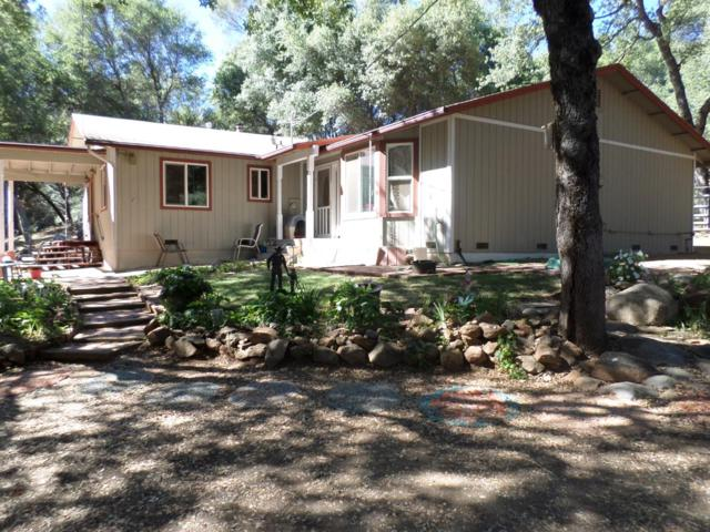 13584 Woodlake Rd, Grass Valley, CA 95949 (MLS #19049333) :: REMAX Executive