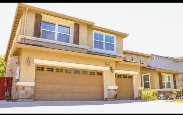 1560 Nassau Lane, Brentwood, CA 94513 (MLS #19049644) :: Heidi Phong Real Estate Team