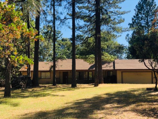 11037 Quail Drive, Pine Grove, CA 95665 (MLS #19050309) :: Heidi Phong Real Estate Team