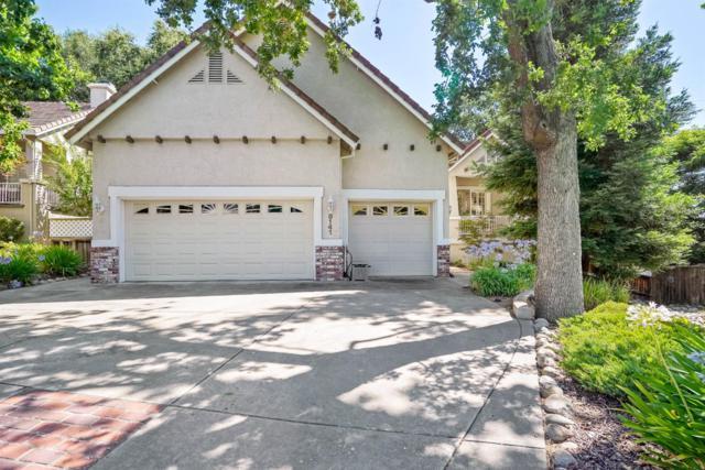 8141 E Carriage Lane, Fair Oaks, CA 95628 (MLS #19051668) :: The Merlino Home Team