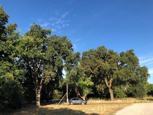38392 La Rue, Davis, CA 95616 (MLS #19053000) :: The MacDonald Group at PMZ Real Estate