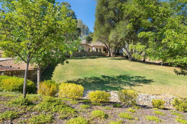 2310 Fieldstone Drive, Placerville, CA 95667 (MLS #19053668) :: REMAX Executive